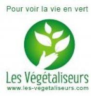 vege12114405281